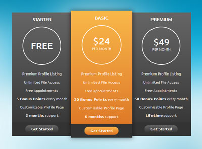 an-tuong-voi-pricing-table-lam-tu-css3